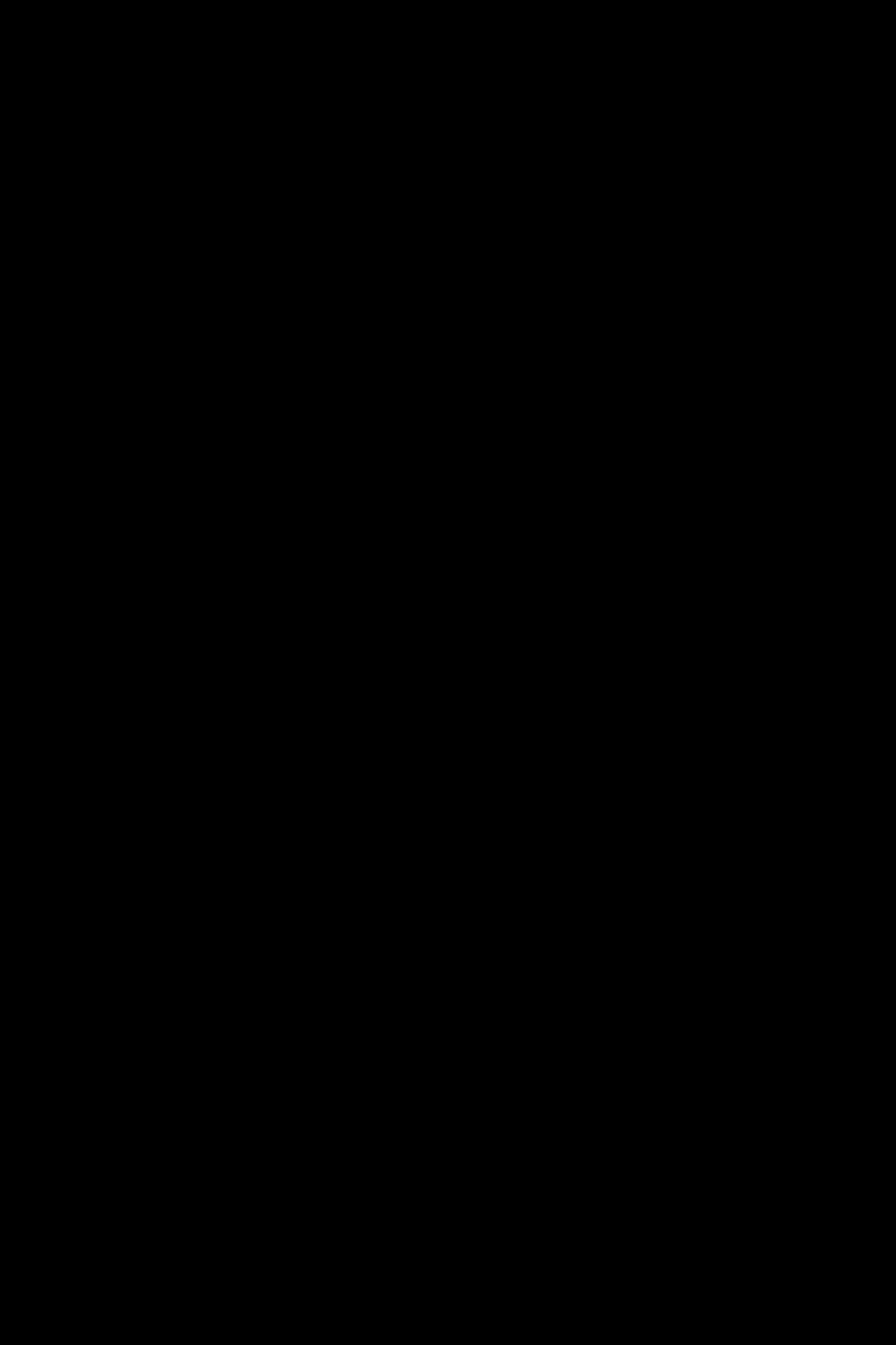 Les silhouettes de la passerelle